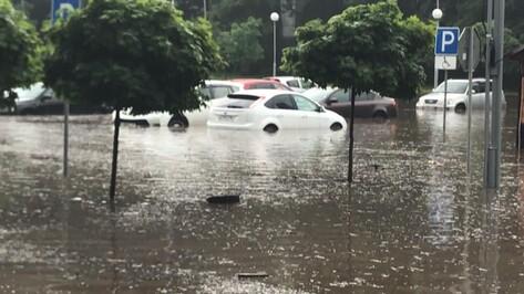 Владельцы затопленных в воронежском парке машин объявили поиск коллег по несчастью