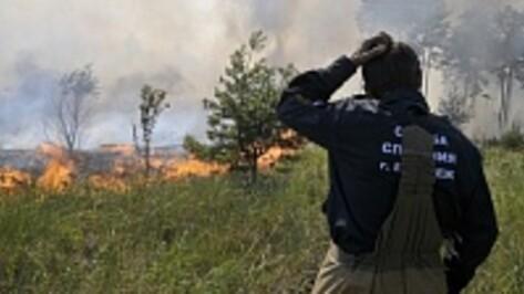 В 17 районах Воронежской области сохранилась высокая пожароопасность