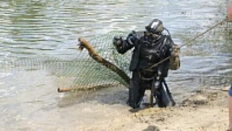 В Поворинском районе у пляжей очистили дно Хопра