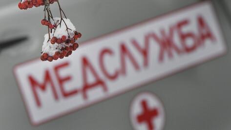 Микроавтобус перевернулся под Воронежем: водитель погиб