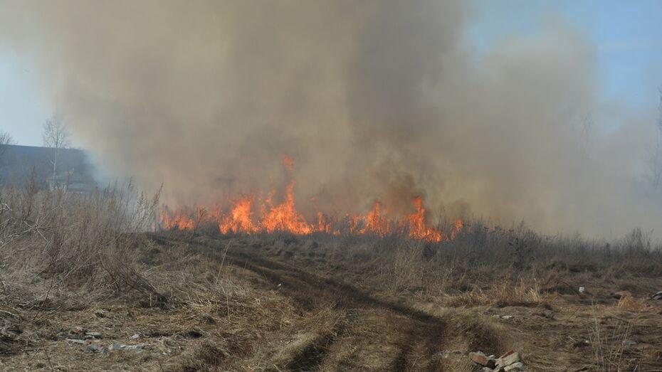 В нижнедевицком селе из-за непотушенного окурка сгорели два дома