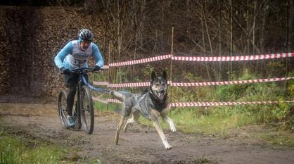 Воронежец стал чемпионом России по ездовому спорту на самокате с собакой