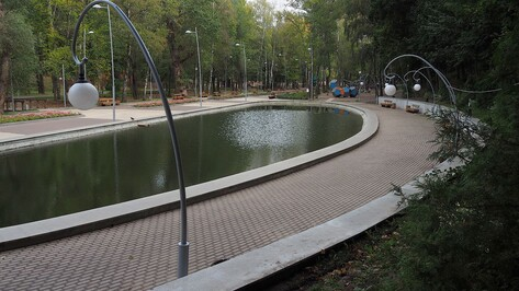 Мэрия Воронежа объяснила причину появления тины на пруду в Центральном парке