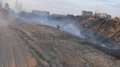 Спасатели потушили ландшафтный пожар на окраине Воронежа