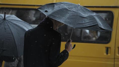 Воронежцев предупредили об опасных дожде и мокром снеге