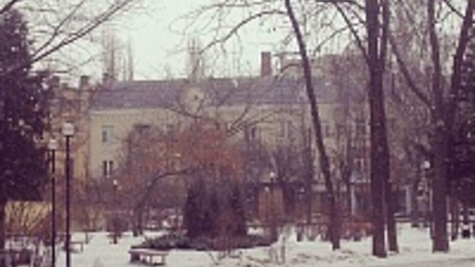 «Зимняя» погода в Воронеже продлится всю неделю