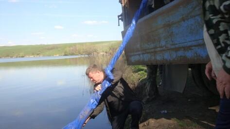В Нижнедевицкий пруд запустили тонну мальков карпа и белого амура