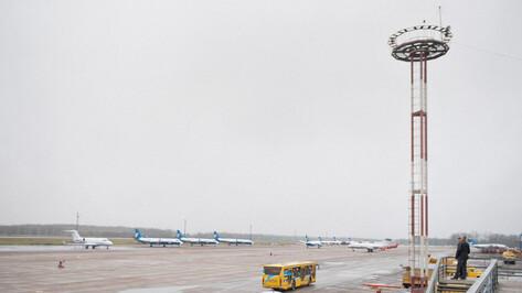 Ледяной дождь помешал воронежскому губернатору улететь в Москву