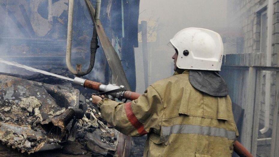 За полторы недели погибли 9 человек на пожарах в Воронежской области
