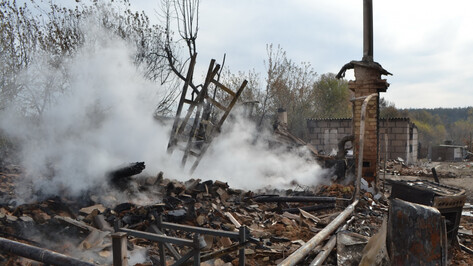 После ЧП в сгоревшем воронежском селе проверят все линии электропередачи в регионе