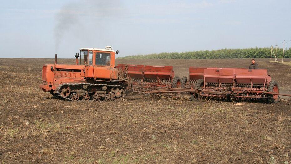 В хозяйствах Калачеевского района начались полевые работы