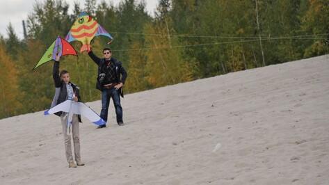 Воронежский фестиваль воздушных змеев сменил прописку
