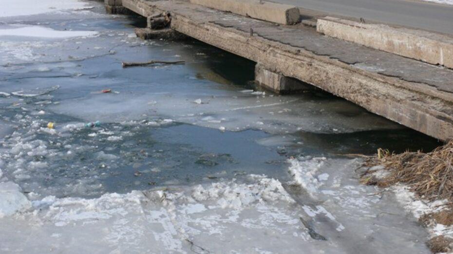 Житель Рамонского утопил свою «Шкоду» в реке Воронеж