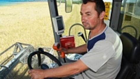 Калачеевские хлеборобы намолотили 100 тысяч тонн зерна
