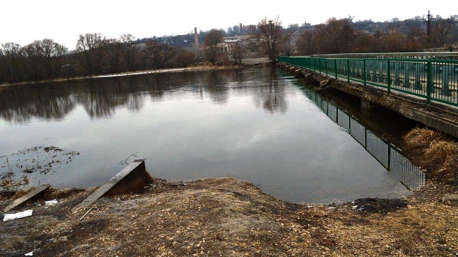 В реке под Воронежем утонула Audi