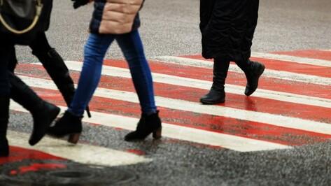Власти определили подрядчика для нанесения разметки на 129 участков дорог в Воронеже