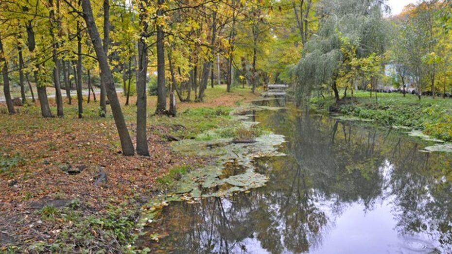 В 2013 году в Воронежской области реконструируют 24 парка и сквера