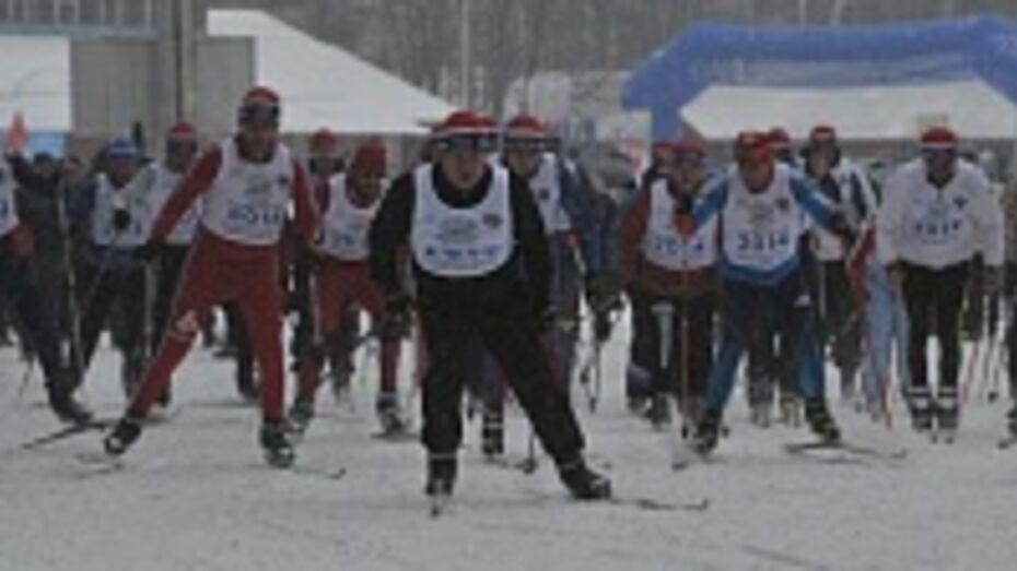 Около 5 тысяч человек вышли сегодня на «Лыжню России» в Воронеже