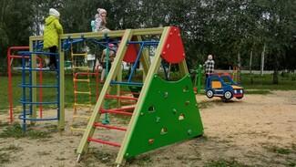 Спортивно-игровую площадку сделали общественники в калачеевском селе Медвежье
