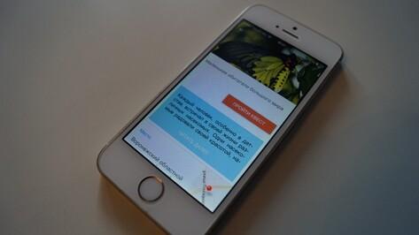 Воронежский краеведческий музей запустил мобильный квест о насекомых