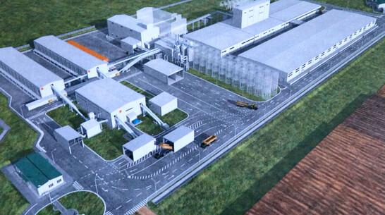 Семенной завод построят в Рамонском районе до 2024 года
