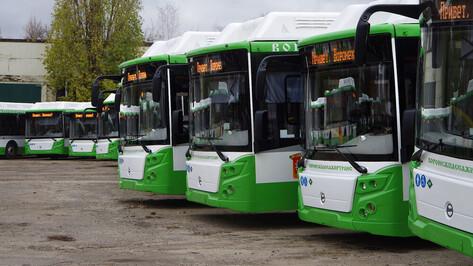 Новый автобусный маршрут решили создать в Воронеже