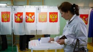 Итоговая явка на выборах в Воронежскую облдуму едва превысила 50%