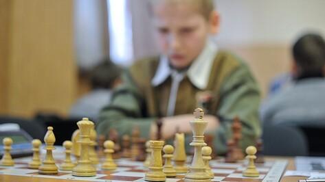 На шахматный фестиваль в Воронеж съедутся игроки из 10 стран