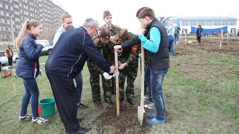 Острогожцы посадили почти 2 тыс саженцев в рамках акции «Лес Победы»