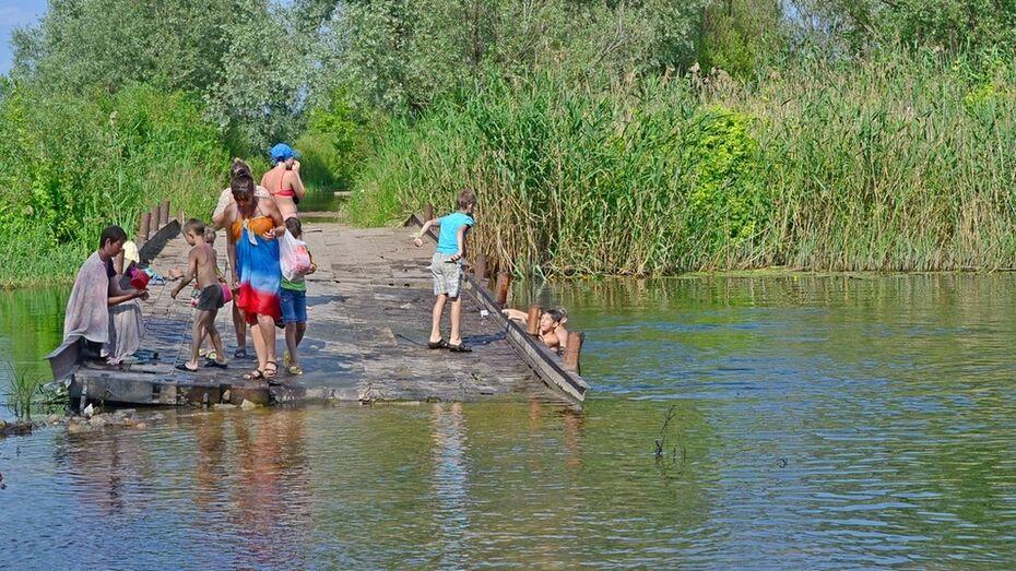 В грибановском селе отремонтируют мост через реку Савалу