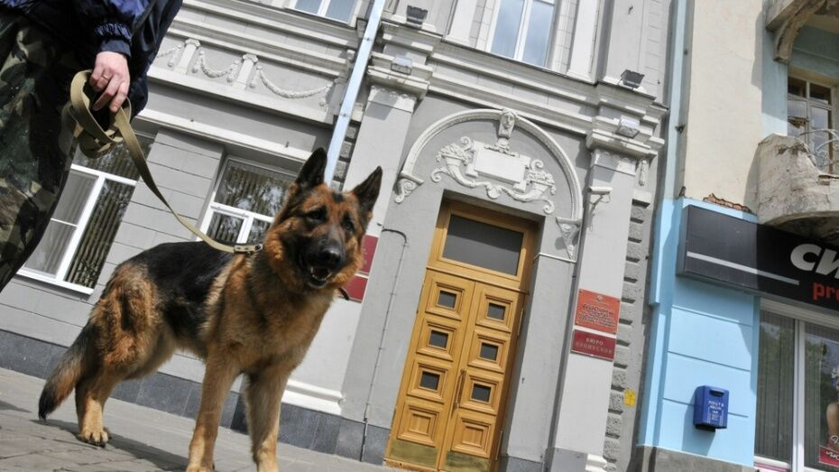 Спецслужбы в Воронеже поработают в усиленном режиме на День города