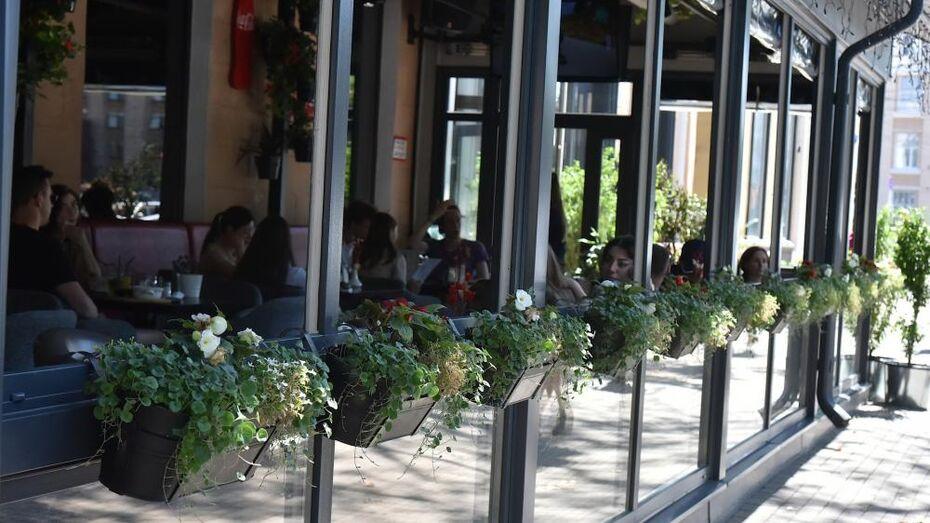 Воронежским бизнесменам вернут деньги за аренду земли под летние кафе