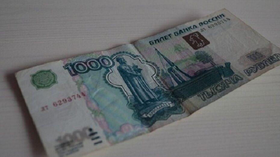 Жительница Семилукского района получила 1,5 года колонии за 1 тыс рублей