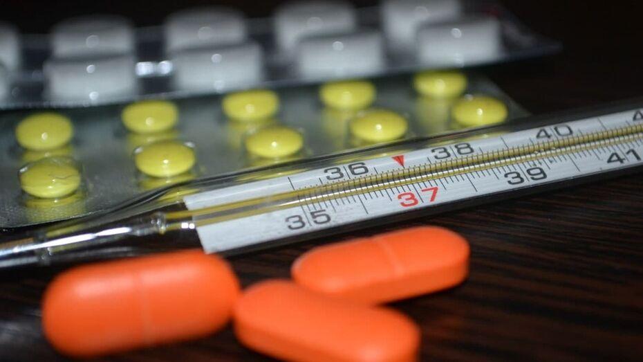 Бесплатные лекарства и нужен ли выходной 31 декабря: что обсуждают воронежцы в соцсетях