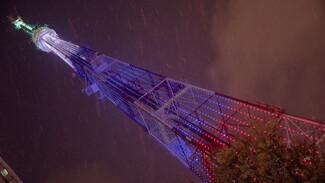 В День города воронежская телебашня превратится в гигантскую открытку
