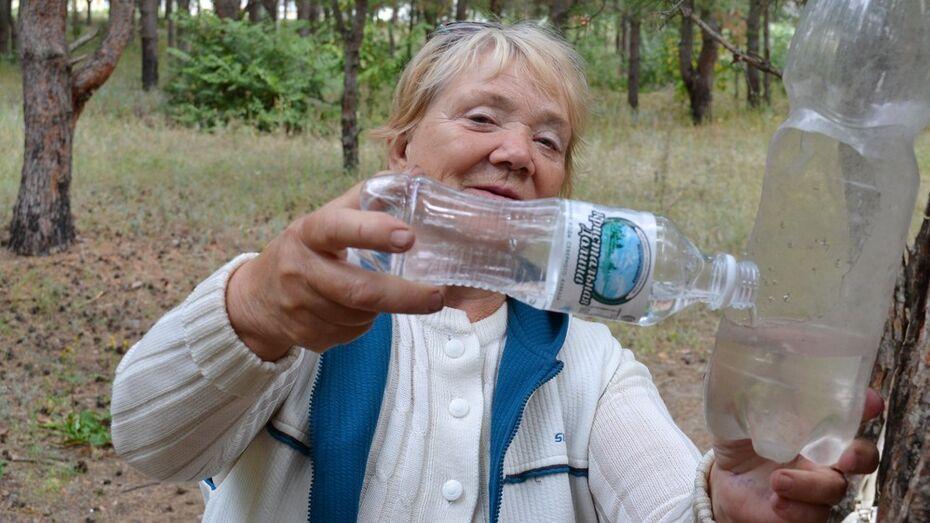 Лискинские пенсионеры  взяли под опеку белок в пригородном лесу
