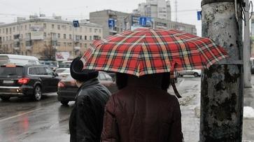 Аномальное тепло сохранится в Воронеже на новой неделе