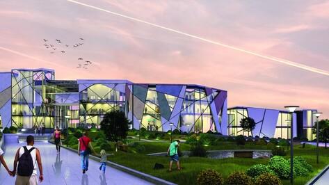 Дом анимации и аквацентр на ВАСТ. Каким увидели Воронеж будущего молодые архитекторы