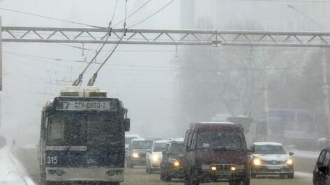 В Рождество объявили желтый уровень опасности по Воронежской области