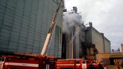 Спасатели опубликовали видео тушения пожара на элеваторе под Воронежем