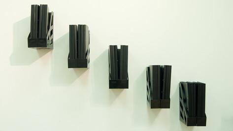 Доцент воронежского университета сделала арт-объекты из своей диссертации