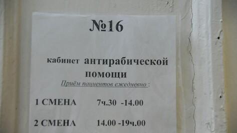 В Воронежской области зафиксировали 87 случаев бешенства у животных с начала года