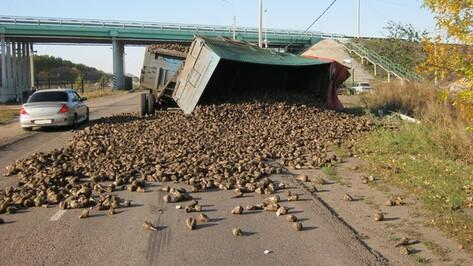 В Панинском районе опрокинулся «КамАЗ» со свеклой