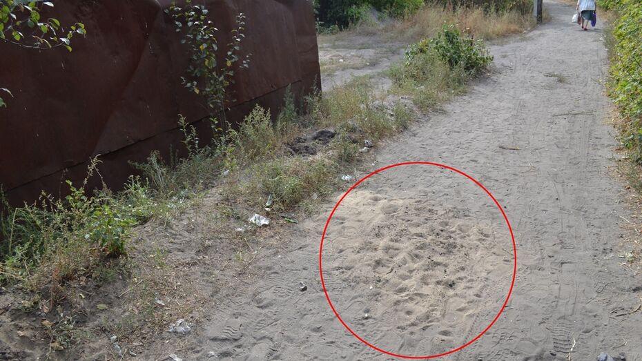 Возле тоннеля в Воронежской области перерезали горло женщине, которая шла за пенсией
