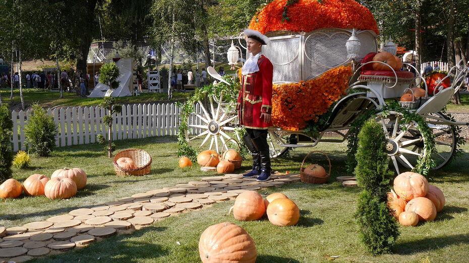 Выставку-ярмарку фестиваля «Город-сад» в Воронеже расширят в 2021 году