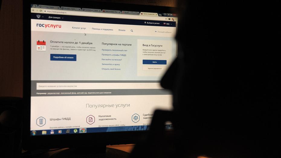 Более 1,5 млн жителей Воронежской области получили госуслуги в электронном виде