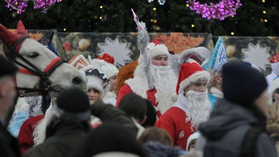 В Воронеже на новогодних каникулах организуют 4,5 тыс мероприятий