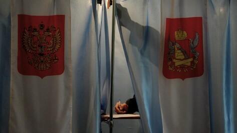 «Единая Россия» и ЛДПР подали документы в Воронежский горизбирком