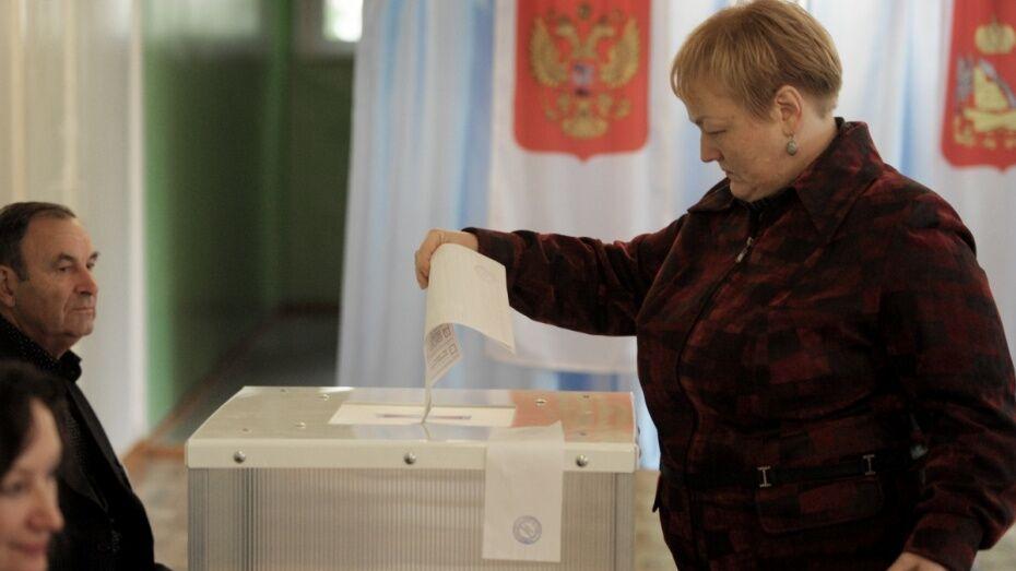 Половина воронежцев признали свободу и честность выборов в России