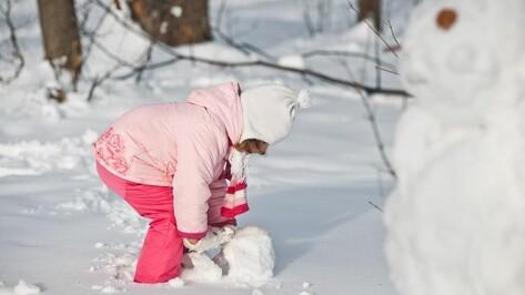 В новогоднюю ночь в Воронеже будет морозно и снежно